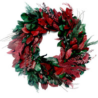 Princeton Holiday Christmas Wreath - 24 inch