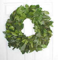 Salal Wreath Kiwi Green - 24 inch