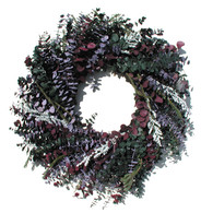 Vineyard Eucalyptus Wreath - 24 inch