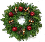 Apple Boxwood Fresh Christmas Wreath 24 in