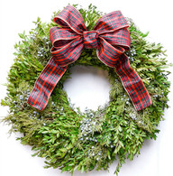 Oxford Holiday Fresh Boxwood Wreath 22 in