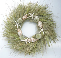 Seabrook Natural Summer Seashell Wreath 22 in