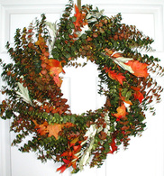 Appalachia Eucalyptus Wreath - 24 inch