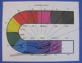 Colors & Vitality Chart