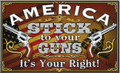 America Stick to your Guns Shirt