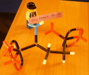 Glutamic Acid MicroMolecule DIY Kit