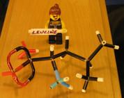Leucine MicroMolecule DIY Kit