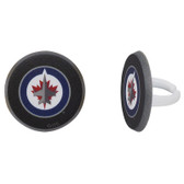 Winnipeg Jets Cake and Cupcake Toppers