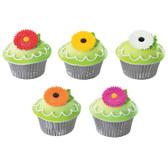 Daisy Flower Cake Topper Pics