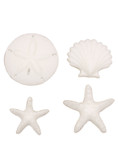 Beachcomber Sea Shell Pressed Sugars