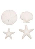 Beachcomber Sea Shell Pressed Sugars