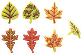 Fall Leaves Cupcake Pics ( 6 pc )