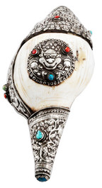 Conch Shell, Sankha with Dragon