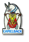 Camelback Ski Resort Pin