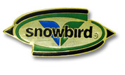 Oval Snowbird Ski Resort Pin