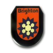 Brighton Logo Magnet