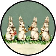 Musical Bunnies BR