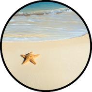 Starfish Beach BR