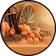 Wagon Wheel BR