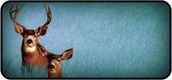 Oh Deer Blue