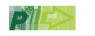 Pioneer4You Logo
