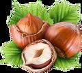 FlavorTudes® - Flavor Shots! - Hazelnut