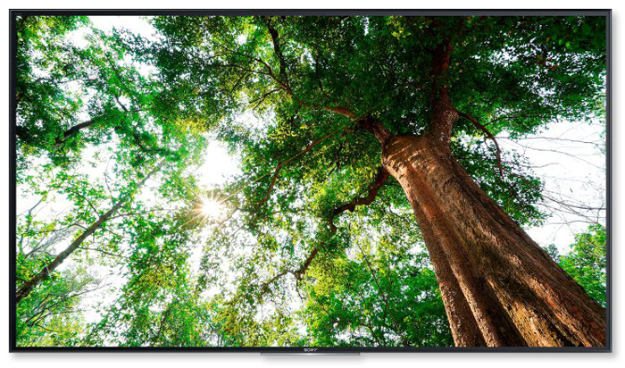 Sony 4K High Dynamic Range
