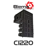 "Biema Dual 12"" (305 mm) 700W Active Line Array System"