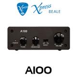 Beale Xpress A100 Class D 100W Subwoofer Amplifier