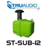 """TruAudio ST-SUB-12 SubTerrain 12"""" 400W Underground Subwoofer"""