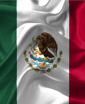 Mexican Flag Flying