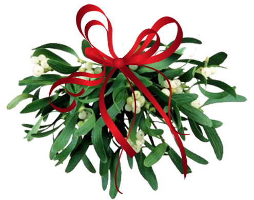 webclipart.about-.com-mistletoe-kissing-ball.png