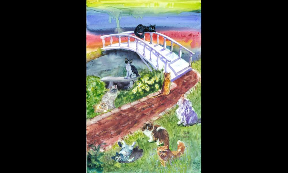 Cat Rainbow Bridge