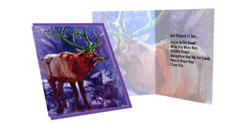 Greeting card banner card comes with matching envelope in a clear protective cello m4hsunfo