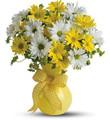 mother's day flowers abilene texas