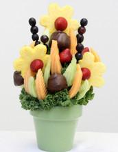 chocolate covered fruit abilene