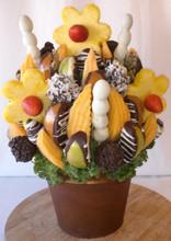 fruit flowers abilene