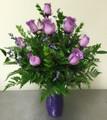 lavender roses abilene tx