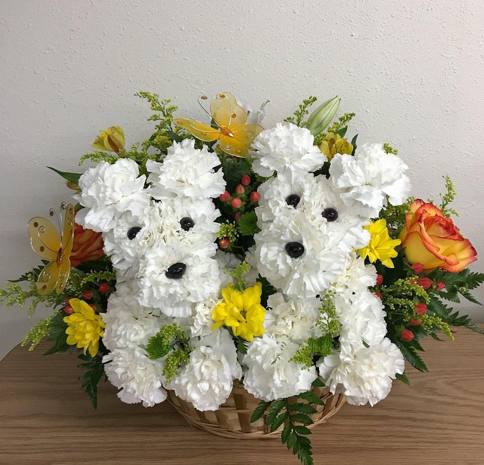 Flower Puppy - Florists in Abilene Tx - Big Country Flowers