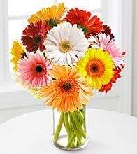 abilene tx florists