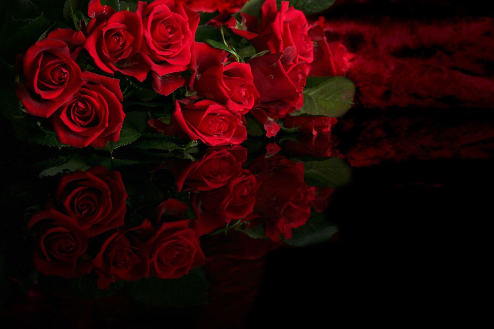 winter-rosesnew.jpg