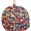 Rainbow Sprinkle Apple