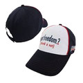 Got Freedom? Thank a Vet Hat (2498)