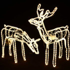 Set of 2 Animated 3D LED Warm White Deer Couple Christmas Lights