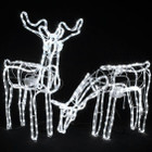 Set of 2 Animated 3D LED White Deer Couple Christmas Motif Rope Lights