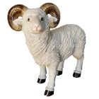 45CM White Ram Polyresin Garden and Home Decor