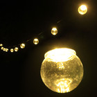 6.5M 20 LED Warm White Festoon Fairy Lights with Clear Round Globe