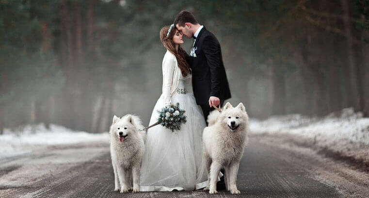 10 wow worthy winter wedding ideas mywedstyle 10 wow worthy winter wedding ideas junglespirit Image collections