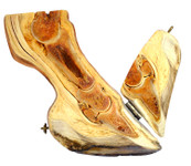 3D foundered hoof educational model