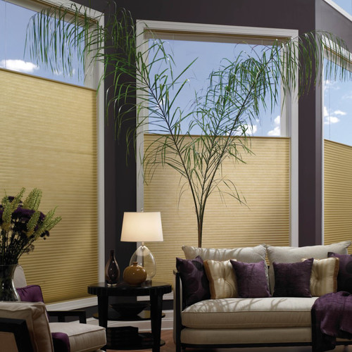 Aura Top Down Bottom Up Cordless Cellular Shades Window